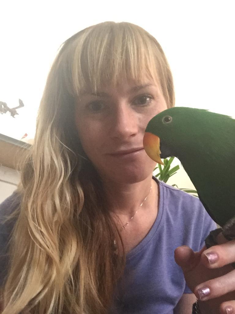 Bev's Bird Boutique Flyper Distributor - Bird and Avian Diapers